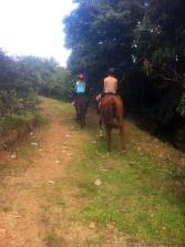 trail back